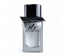 Burberry Mr. Burberry Edt Outlet Erkek Parfüm 100 ml